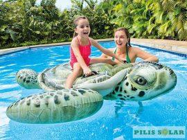 Felfújható óriás teknős
